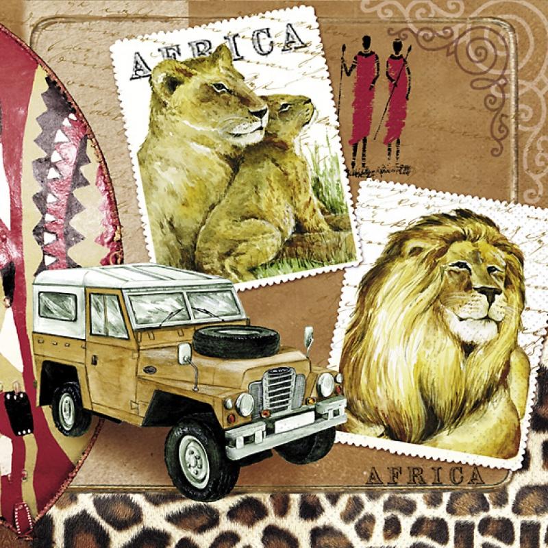 afrika africa l we safari zebra jeep 33er 3 55 allerle. Black Bedroom Furniture Sets. Home Design Ideas