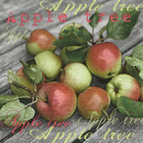 From The Apple Tree Apfel Obst