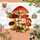 Pilze Cottage Herbst Vintage Mushrooms 33 x 33 cm